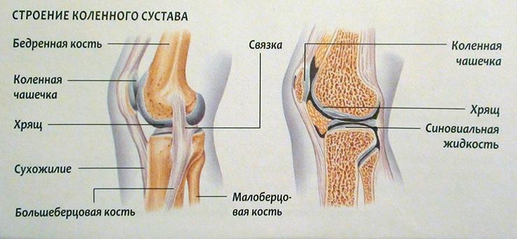 olaliigese osteokondroosi ravi kodus ola liigesevalu maaramisel
