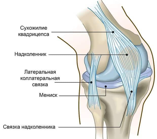milline geel pumbatakse liigese kuidas ravida artroosi 1 kraadi