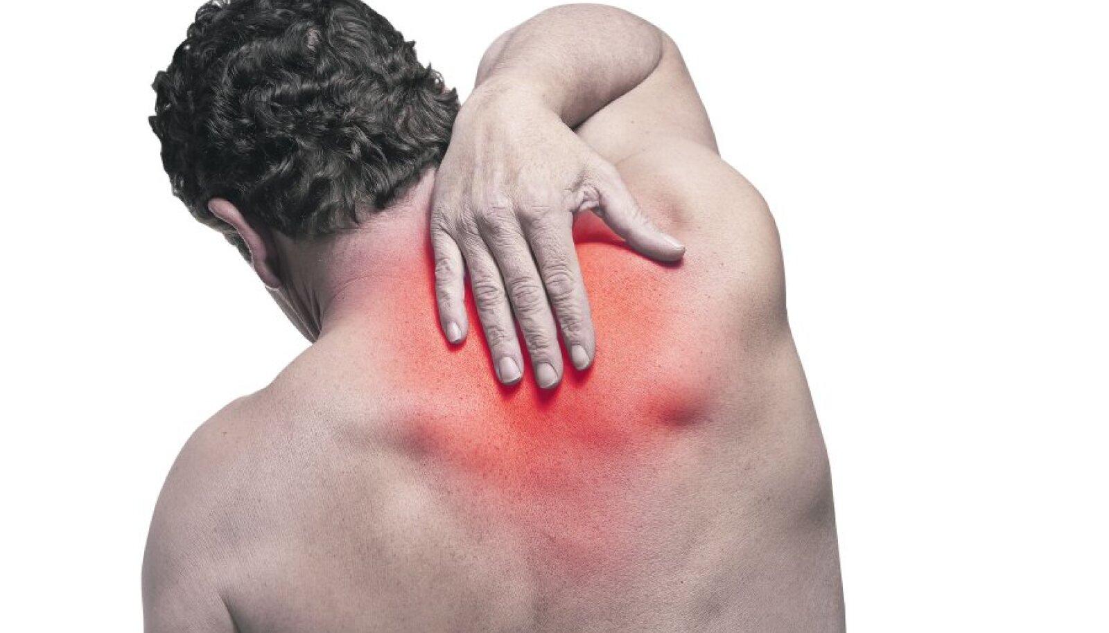 salvi kasitsi liigeste harja jaoks ravi menovazin liigestega