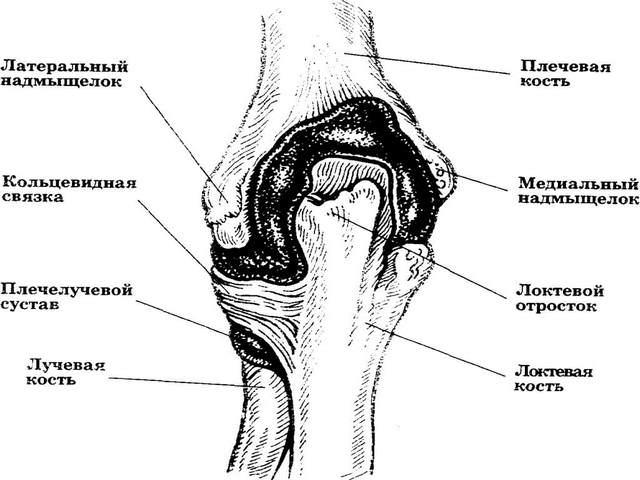 pohjuse kaes olevad valud jalgade liigeste turse