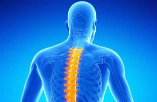 vmu liigeste raviks valu salv toetab