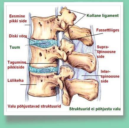 ostetavate liigeste valu hoidke poletikku parast vigastusi